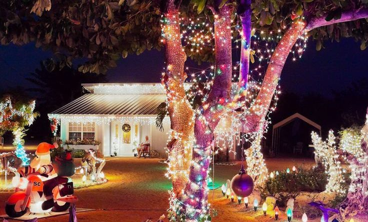 15 Colorful and Outrageously-Themed Outdoor Christmas Lights…